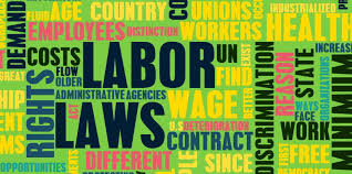 Employment Law vs. Labor Law – What's the Difference?